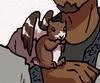 Barred flying squirrel